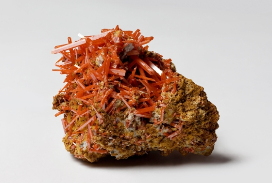 Crocoite_from_the_Dundas_extended_mine,_Dundas,_Tasmania,_Australia